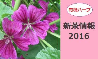 新茶201604